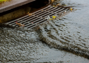 Stormwater: What You Should Know About It